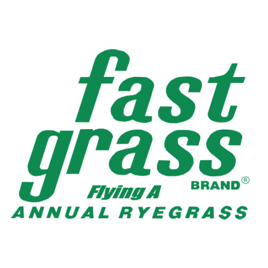 FastGrass 'Flying A' Annual Ryegrass | #1 in Texas | 50 Lb Bag